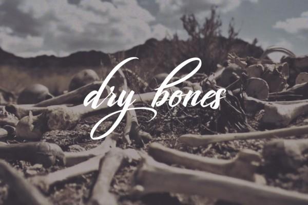 drybones1